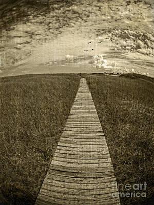 Boardwalk Through The Dunes Poster by Edward Fielding