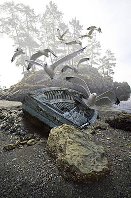 Boat Wreck Beached On A Misty Rocky Shore Amidst Flying Gulls Poster by Randall Nyhof