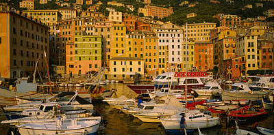 Boats At The Harbor, Camogli, Liguria Poster by Panoramic Images