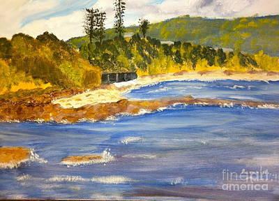 Boatsheds At Sandon Point Poster by Pamela  Meredith