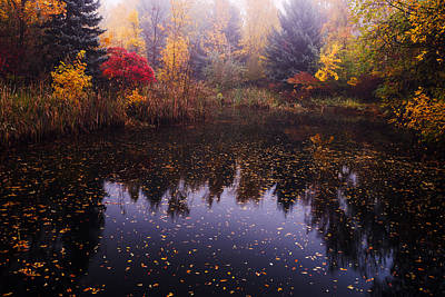 Boise Autumn Poster by Vishwanath Bhat