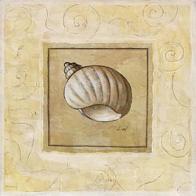 Bonnet Shell Poster by Pablo Esteban
