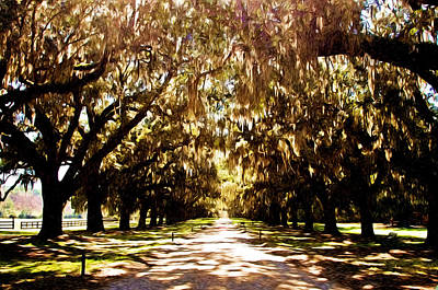 Boone Plantation Poster by Bill Howard