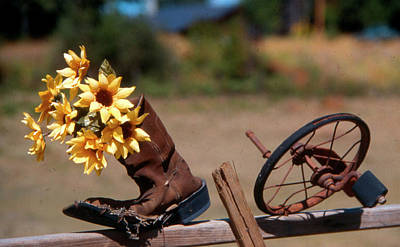 Boot With Flowers Poster by Ron Roberts