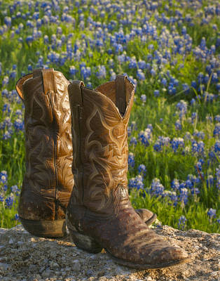 Boots And Bluebonnets Poster by David and Carol Kelly