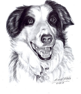 'border Collie' Poster by Barb Baker