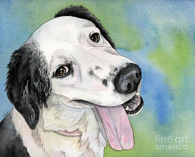 Border Collie Mix Dog Poster by Cherilynn Wood