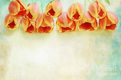 Border Of Orange Tulips Poster