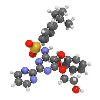 Bosentan Hypertension Drug Molecule Poster by Molekuul