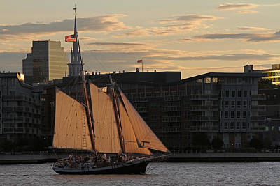 Boston Harbor Sailing On The Schooner Liberty Star Poster
