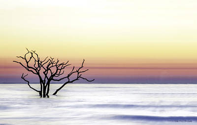 Botany Bay Sunrise Poster by Kathy Ponce