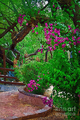 Bougainvillea In The Courtyard Poster