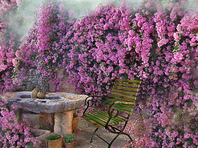 Bougainvillea  Poster by Manfred Lutzius