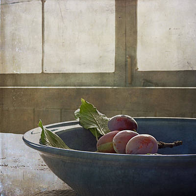 Bowl Full Of Plums Poster by Sally Banfill