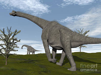 Brachiosaurus Dinosaurs Walking In An Poster by Elena Duvernay