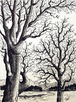 Poster featuring the drawing Branches by Carol Hart