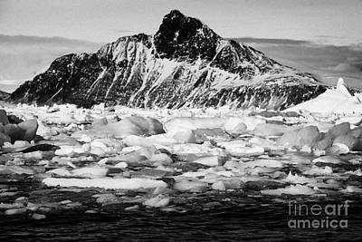 brash sea pack ice forming together as winter approaches cierva cove Antarctica Poster by Joe Fox
