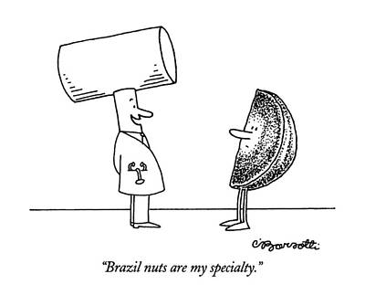 Brazil Nuts Are My Specialty Poster