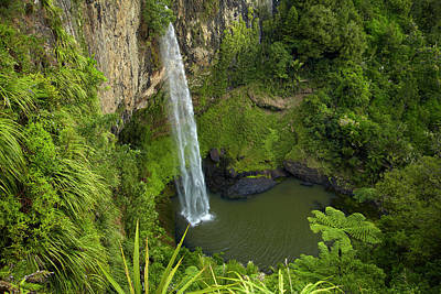 Bridal Veil Falls, Near Raglan Poster by David Wall