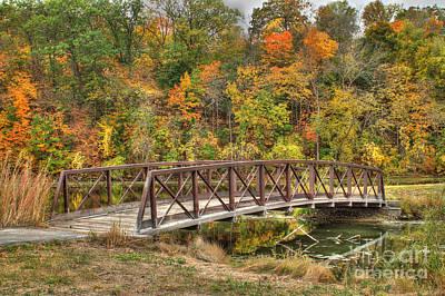 Bridge Amongst Autumn Colors Poster