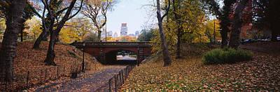 Bridge In A Park, Central Park Poster