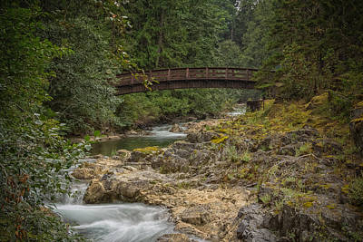 Bridge In The Woods Poster