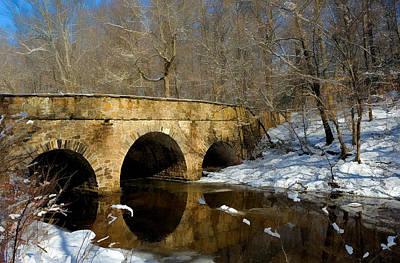 Bridge In Woods Poster