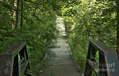 Poster featuring the photograph Bridge Into The Woods by Jim Lepard