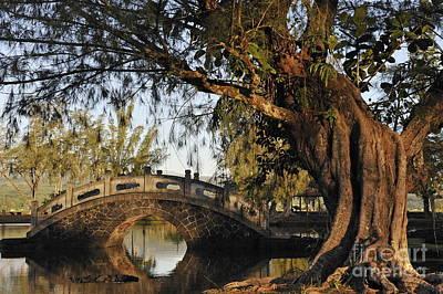 Bridge Over Water At Japanese Garden Poster by Sami Sarkis