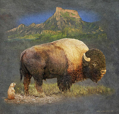 Brief Altercation - Bison And Prairie Dog Poster by R christopher Vest