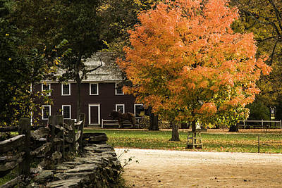 Poster featuring the photograph Bright Orange Autumn by Jeff Folger