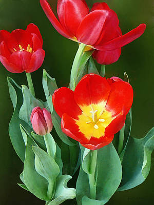 Bright Red Tulips Poster by Susan Savad