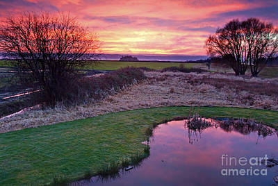 Brilliant Sunset With Pond Landscape Poster