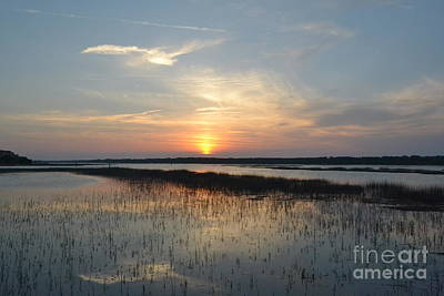 Poster featuring the photograph Broad Creek Sunset II by Carol  Bradley