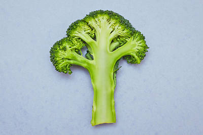 Broccoli Poster by Tom Gowanlock