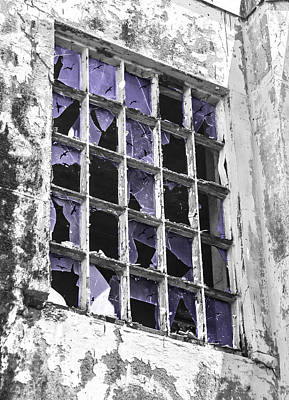 Broken Windows With Birds Poster