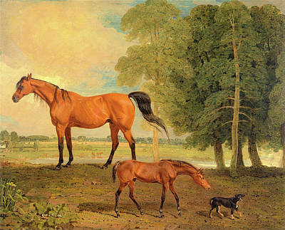 Broodmare With Foal, And A Terrier Broodmare With Foal Poster by Litz Collection