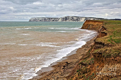 Brook Bay And Chalk Cliffs Poster