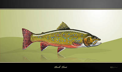 Brook Trout Poster by Serge Averbukh
