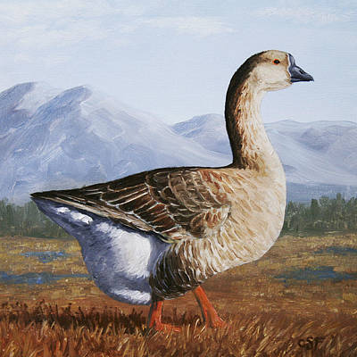 Brown Chinese Goose Poster by Crista Forest