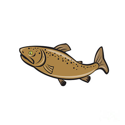 Brown Trout Fish Side Cartoon Poster