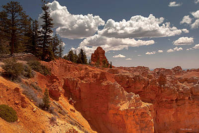 Bryce Canyon Sky  Poster by Tim Bryan