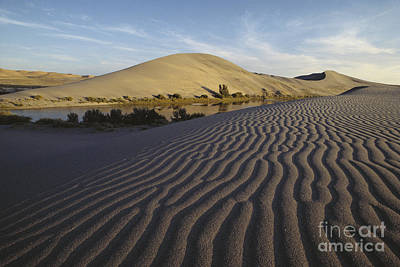 Bruneau Dunes And Lake, Idaho Poster by William H. Mullins