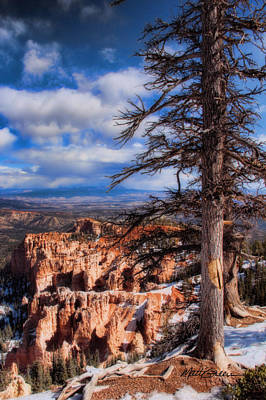 Bryce Canyon 1 Poster by Marti Green