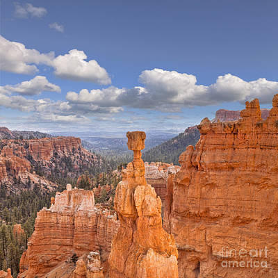 Bryce Canyon Utah Usa Poster by Colin and Linda McKie
