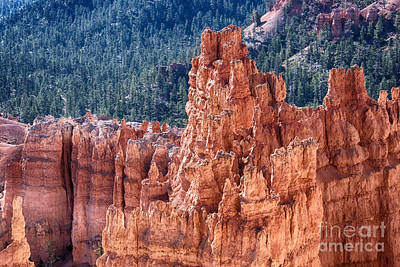 Bryce Canyon Utah Views 524 Poster