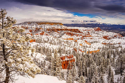 Bryce Canyon Winter Poster by TL  Mair