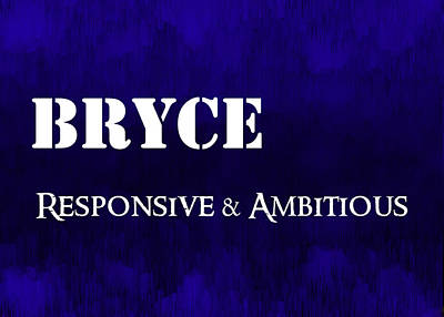 Bryce - Responsive And Ambitious Poster by Christopher Gaston