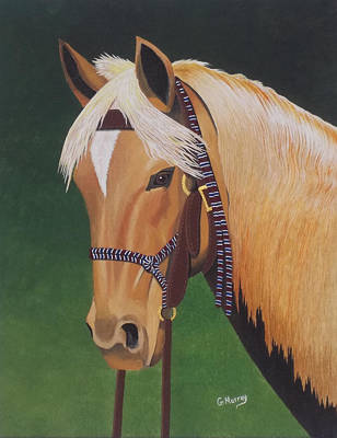 Buckskin Horse Poster
