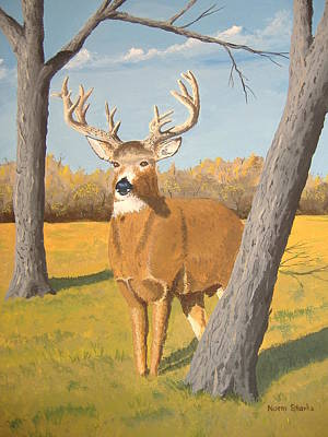 Bucky The Deer Poster by Norm Starks